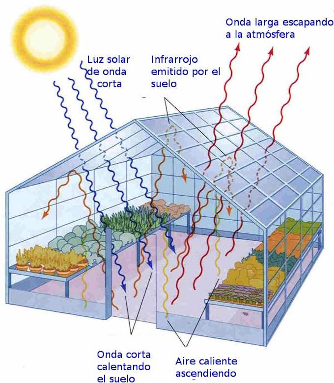 Beneficios energ ticos de construir un casa con for Construccion de viveros e invernaderos