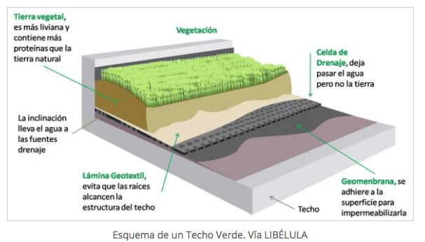componentes techos verdes