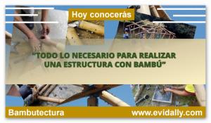 Estructuras del bambu